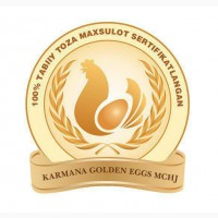 Курица несушка OOO Karmana Golden Eggs, город Навои Карманинский район