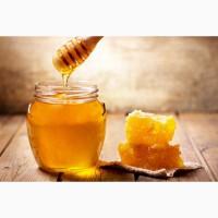 Продам мед цветочный Киргизский