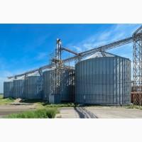 Реализуем мягкую пшеницу 3, 4 классов из Казахстана, урожай 2021 г