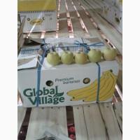 Продаю яблоки Семеренко, Оптом. Свежие и экологически чистые