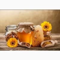 Натуральный мёд от пчеловода гарантия