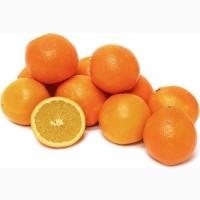 Свежие Апельсины из Ирана