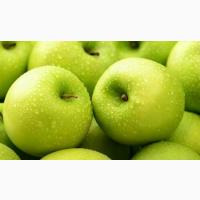 Продам Яблоко урожай 2020г