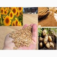 Продам отруби пшеничные, и сельхоз товары от производителя Опом от 200тонн