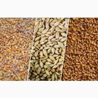 Пшеница 1 - 5 класс, ячмень, соя