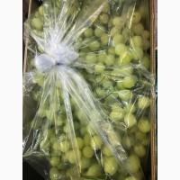 Упаковка МГС (MAP) для транспортировки винограда, Ташкент