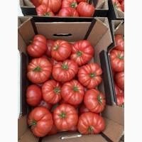 Закупаю овощи урожай 2021г: морковь, свёкла, баклажаны, перец, томат и тд