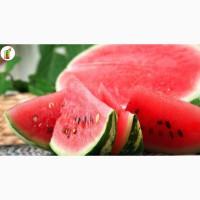 Оптовый рынок фруктов и овощей