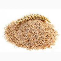 Продам отруби пшеничные с доставкой. И прочие корма