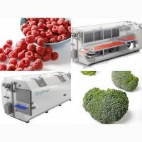 Шоковая заморозка фруктов и овощей