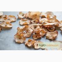 Продам яблоки сушенные (Dried apples)