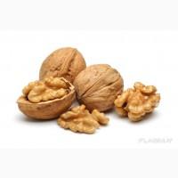 Экспорт Грецкий орех (орехов) из Узбекистана