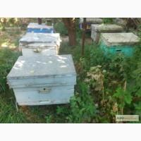 Продам вещи для начинающего пчеловода