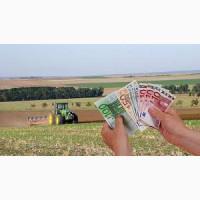 Простое фермерство с кредитом