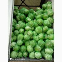 Продам оптом капусту урожая 2020