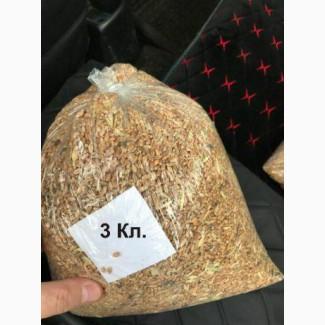 Продам Пшеницу в наличии