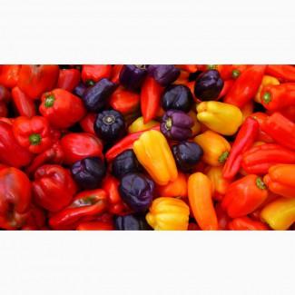 Продается сушеный - сладкий болгарский перец