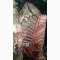 Мясо Говядины замороженное